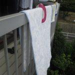 くもりの日に布団干すのは意味ある?くもりでも干していいときと晴れてても干さない方がいい場合