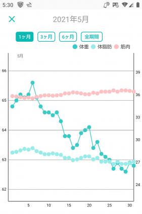 -10キロの体重グラフ(1年1ヶ月後)